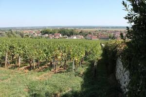 le village depuis le vignoble